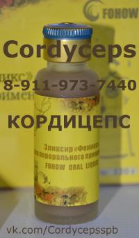 http://www.massagespb.ru/images/cordycepsspb.jpg