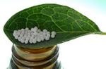 Гомеопатия, консультирует врач гомеопат Петербург