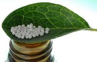 Гомеопатия, консультирует врач гомеопат Петербург +7-911-973-7440